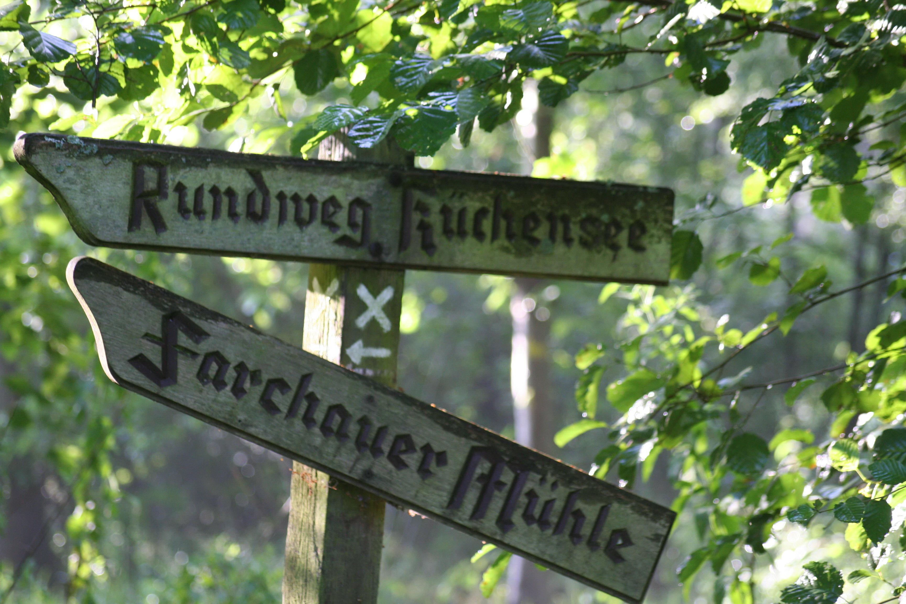 Viele Wege führen nach Farchau